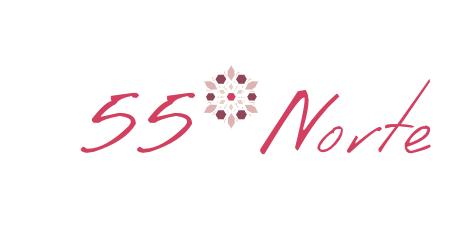 55GN Viajes nórdicos
